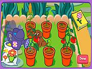 Un merveilleux jardin!